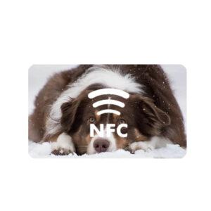 Customized Digital printing NFC stickers